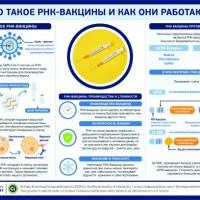 Как обстоят дела с вакцинацией в мире на начало 2021 года?