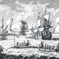 Гамбург – столица китобойного промысла